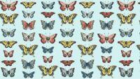 Fat Quarter Vintage Journal Butterflies 100% Cotton Quilting Fabric Makower