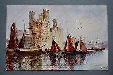 R&L Postcard: Wales, Caernarvon Castle, Jotter, Misch & Stock Nature Miniatures