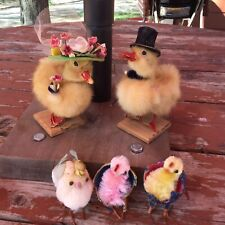 Vintage Taxidermy Baby Ducklings? Decoration