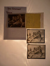 Brothers Karamazov Yul Brynner (1) Photo (2) Negative Lot