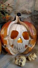 "NIB 10.5"" Realistic Skeleton Skull Jack O Lantern Light up HALLOWEEN PROP Decor"