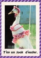 Carte Postale - Oie