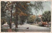 SAVANNAH GEORGIA~GASTON STREET POSTCARD 1910