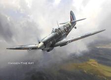 Supermarine Spitfire IX 306 Squadron Polish Aviation Art Print Darryl Legg