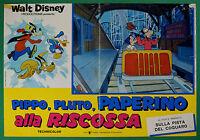 T49 Fotobusta Goofy Pluto Donald die die Rettung Walt Disney Animation 2