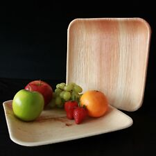Palm Leaf- 10 inch Square( 25 x 25cm) Eco Friendly, Compostable Disposable Plate
