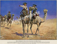 Carl Becker Protection Force DSWA Camel Riding Desert Kalahari Captain erckert 1908