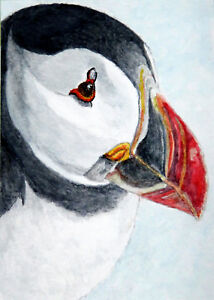 """ACEO 2.5""""x3.5"""" Canvas print of Watercolour 'Puffin Portrait #2' Bird by E.Wardle"""
