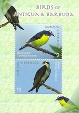 Antigua & Barbuda BIRDS Mini Sheet of 2 MINT NH