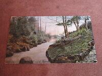 Early  postcard - Royal Botanical gardens - Belfast - Northern Ireland