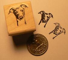 """P24 Greyhound dog rubber stamp WM 0.7x0.8"""""""