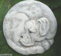 MOLD  plastic Rottie / boxer dog plaque mold garden ornament stepping stone