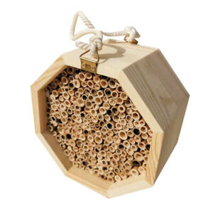 Mason Bee House Hanging Wooden Bee Hive Attracts Bee Pollinators to Enhance