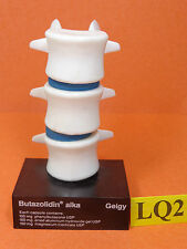 Vintage 3D Anatomical Model of the Human Spine-Disc Geigy Butazolidin Alka