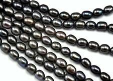 Perles de Culture d'Eau Douce 2,8-3mm Grains de Riz Ovales Noir Paon Grade A