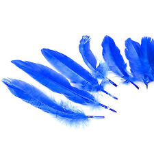 20cm Royal Blue Easter Bonnet Arts & Crafts Natural Dyed Feathers - 10 Pack