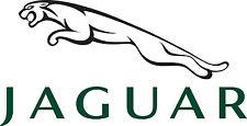 Jaguar OEM Accessory Rubber Rear Floor Mats 2001-2008  X-Type C2S38987