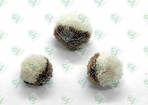 3 Carp BREAD CRUST Flies Floating BISCUIT Barbless FLY Fishing Size 8,10,12