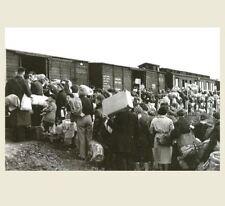 German Concentration Camp Train PHOTO Military World War II, Boarding Train