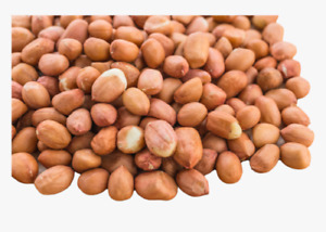 Peanut | Ground Nut | Raw Best Quality | Moongfali Dana Sing Dana NON-GMO