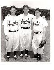 San Francisco Seals Pcl Dimaggio Brothers 8X10 Photo Baseball Hof Usa