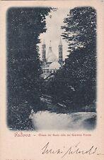 PADOVA - Chiesa del Santo vista dal Giardino Treves