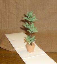 große Grünpflanze -Puppenstubenminiatur-1:12-toll