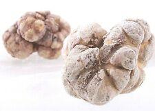 ✈ DHL FROZEN White Truffle Tuber Magnatum Pico - 250g (8,8OZ)