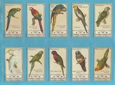 BIRDS - NOSTALGIA CLASSIC REPRINT - C.W.S. - 10  SETS OF 25 PARROT SERIES CARDS