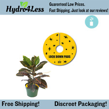 Lock Down Pads 12'' (5pcs) Insect Aphids Fungus Gnats Leafminers Spider Mites
