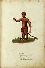Vintage Medieval Framed Print – Bullman Monster (Picture Poster Mythological Art