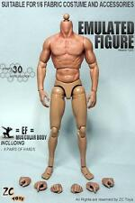 IN STOCK ZC Toys 1/6 Scale 2.0 Muscular Figure Body fit Hot Toys TTM19