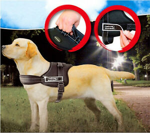 Nylon Working Service Sports Training Dog Harness Heavy Duty Pitbull Husky Boxer