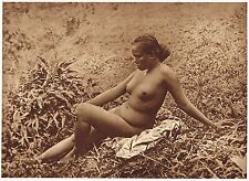 1920s Old Vintage Asian Java Indonesian Female Nude Model Photo Gravure Print c