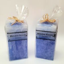Eucalyptus Candle Holiday Scents Discovery Channel Store Rectangular - Lot of 2