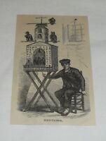 small 1879 magazine engraving ~ BIRD TAMER Madrid, Spain