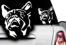 1x Auto Aufkleber Französische Bulldogge French Bulldog Bulli Bully Frenchi dog1