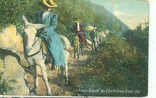 CALIFORNIA, WILSON TRAIL HORSEBACK WOMAN PRE20 PUB. RIEDER #11860 (CA-W)