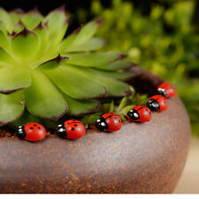50PCS Miniature Fairy Garden Red Beetle Ladybug Ornament Craft/Decoration