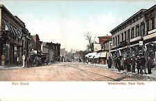 c.1905 Stores Main St. Westchester NY post card Bronx