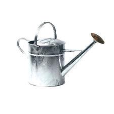 Ambassador Galvanised Watering Can