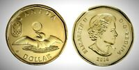 Canada 2014 Olympic Lucky Loonie BU UNC From Mint Roll!!