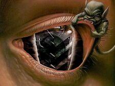 YAMAHA RAPTOR 660 CUSTOM RUKINDCOVERS YELLOW Raptor HeadLight Covers ALL YEARS
