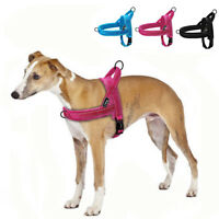 Large Dog Harness No Pull for Beagle Pitbull Small Dog Harness Front Clip US