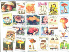 Mushrooms-Fungi 200 all different stamps collection-large-medium size