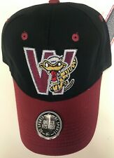 NEW Vintage Wisconsin Timber Rattlers Minor League Baseball Cap