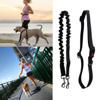 Dog Walking Belt Pet Running Lead Waist Belt Hands Free Jogging Hiking