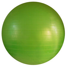 SAVE $$$ Steeden Exercise Ball Green 65cm (Includes Foot Pump)