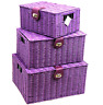 Arpan Set of 3 Resin Woven Storage Basket Box With Lid & Lock Purple