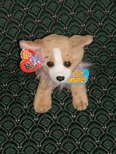 "TY PICO THE 2.0 BEANIE CHIHUAHUA DOG  6"" TALL - UNUSED CODE  - 2009 -  MWMT"